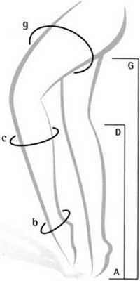 Circonference de cuisse, mollet & cheville en cm